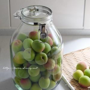リンゴ酢・てんさい糖で梅ジュース(梅シロップ)|2018年の梅仕事