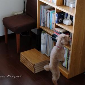 地震のあとの、本と本棚の断捨離