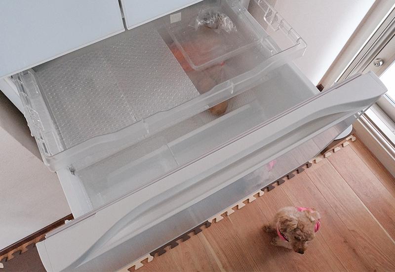 ミニマリスト主婦の冷蔵庫 2021年